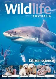 Australian Woodworking Magazine Subscription by Wildlife Australia Magazine Spring 2017 Subscriptions Pocketmags