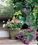 จัดสวนหน้าบ้าน รวมไอเดียจัดสวนหน้าบ้าน รูปจัดสวนหน้าบ้าน