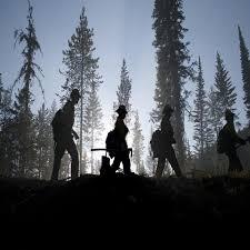 Wild Fires In Montana July 2017 by Montana Wildfire News Npr