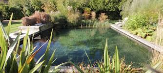 natural swimming pool diy backyard design ideas