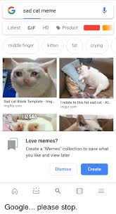 Middle Finger Cat Meme - g sad cat meme latest gif hd product middle finger kitten fat crying