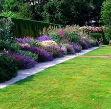 Fence Line Landscaping by 5 Beautiful Bushes To Plant In The Yard Good For Privacy And Very