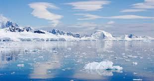 imagenes de la antartida descubren en la antártida una forma de vida desconocida en la tierra
