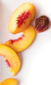 fruit edibles the edible garden growing fruit trees edible tulsa