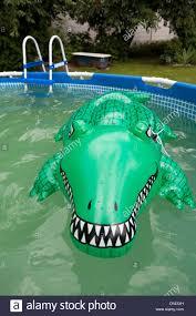 Garten Pool Aufblasbar Wroclaw Polen Ein Kautschuk Krokodil In Aufblasbaren Pool Im