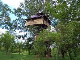 famous tree houses 5 most beautiful and gorgeous tree houses in india rakhduu