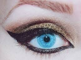 7 best animal makeup images on pinterest animal makeup animal
