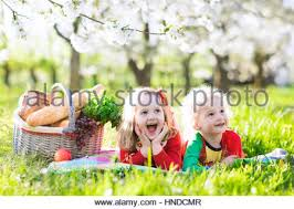 Kids Picnic Basket Little Boy With Group Of Kids Eating Popsicles Stock Photo