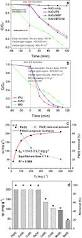 magnetically recyclable bi fe based hierarchical nanostructures