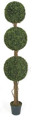 our outdoor topiary 60 inch polyblend boxwood topiary
