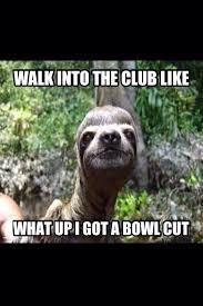 Sloth Jokes Meme - list of synonyms and antonyms of the word sloth jokes