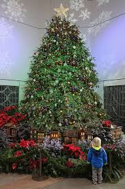 Best Way To Decorate A Christmas Tree Best 10 Ways To Celebrate The Holidays In Washington Dc