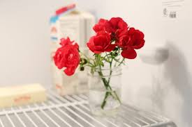 Red Flowers In A Vase How To Take Care Of Roses In Vases Hunker