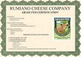 The Best Protein Bars Orlando Dietitian Nutritionist by Black Mondo Grass Monrovia Black Mondo Grass All About Grass