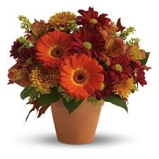 halloween flowers and gifts san diego ca florist branches