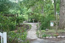 our backyard wildlife habitat