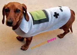 Halloween Costumes Wiener Dogs 110 Cute Pet Halloween Costumes Images Animals