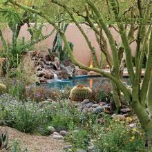 Urban Gardens Phoenix - urban desert gardening jordan a happy gardener urban garden
