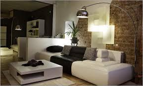 enchanting 70 contemporary small living room decorating ideas