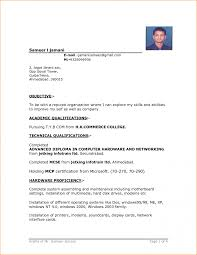 basic resume examples resume example and free resume maker