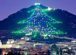 christmas tree pictures of lights in different countries