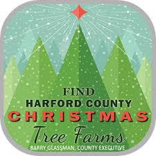 harford county offers tree safety tips harford county
