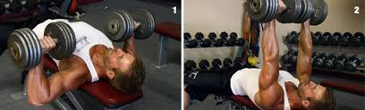 Flat Bench Dumbell Dumbbell Bench Press Second Chance Fitness