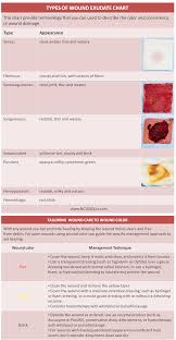 sheet types types of wound exudate cheat sheet nclex quiz