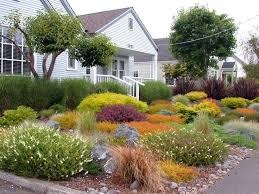 Grassless Backyard Ideas Collections Of Front Yard Gardens Free Home Designs Photos Ideas