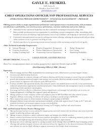 pmp cv resume sample