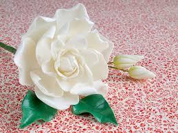 imagenes flores relajantes mery 11 posts me encanta hacer flores de pasta de goma es un
