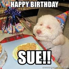 Dog Meme Generator - happy birthday dog meme generator passionx