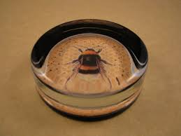 bee paperweight one black and gold bee round paperweight glass
