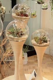 Indoor Planter Pots by Best 20 Cement Flower Pots Ideas On Pinterest Concrete Pots