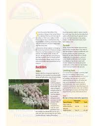 Sheep Gestation Table A Guide To Raising Healthy Sheep