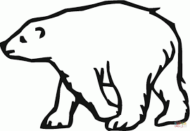 koala bear coloring page bear pictures to color printable teddy coloring pages polar sheet