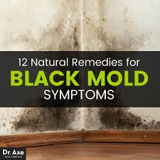 How To Prevent Black Mold In Bathroom Black Mold Symptoms 12 Natural Remedies Dr Axe
