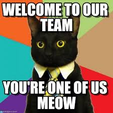 Welcome Meme - welcome to our team business cat meme on memegen