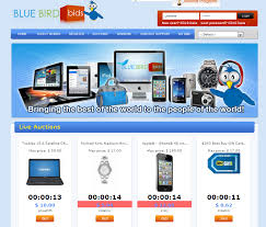 bid auction websites has everyone been talking about the best auction website on