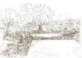 weeping willow tree cox garden designs