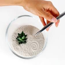Desk Rock Garden Mini Succulent Zen Garden 25 00 Via Etsy So Want This