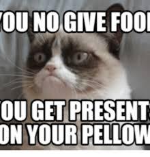 Grumpy Cat Coma Meme - 25 best memes about snowshoe cat grumpy snowshoe cat grumpy