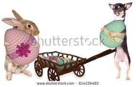 big easter eggs classpics s portfolio on