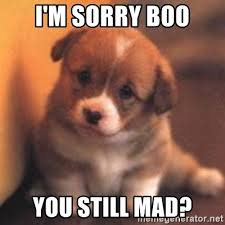 U Still Mad Meme - i m sorry boo you still mad cute puppy meme generator
