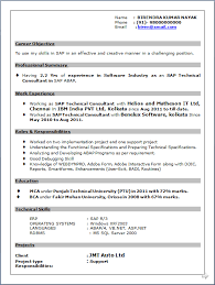 Software Testing Fresher Resume Sample by Professional Resume Resume Sample Of Sap Technical Consultant In