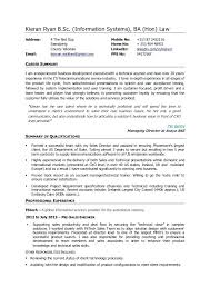 ba resume format professional business resume template u2013 foodcity me