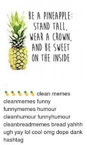Ananas Pineapple Meme - 25 best memes about pineapple pen pineapple pen memes