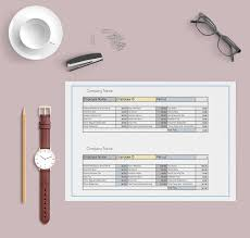 pay stub template paycheck stubs templates free features reports