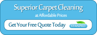 Brisbane Rug Cleaning Rug Cleaning Brisbane Stainpro Great Deals On Rug Cleaning In
