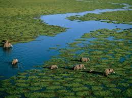 kenya photos national geographic